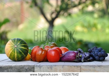 Watermelon peppers tomatoes grapes and beans on a wooden surface close up in perspective. Garden in the background.
