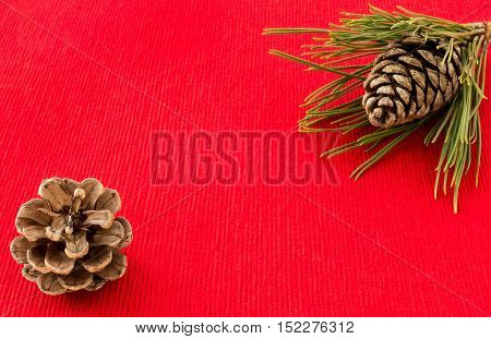 Winter background in red with pine Cones and pine tree twig