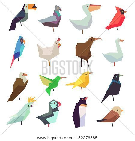 Birds in flat style vector collection. Chicken and parrot, sparrow and pigeon illustration