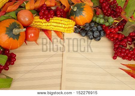 The frame of the gifts of autumn pumpkins, corn, fall leaves, tomatoes, red berry cranberry and grapes are in the old printed music sheets