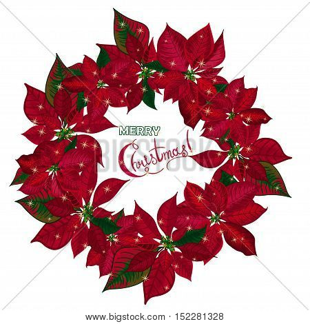 Vintage Christmas wreath with red poinsettia isolated on white background. Vector illustration