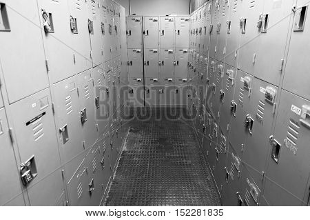 lockers in gym school and plant in black and white tone halloween and horror concept.