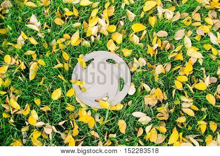 gray car rim on the autumn lawn with leaves