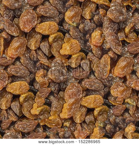 Seamless pattern of the golden raisins background