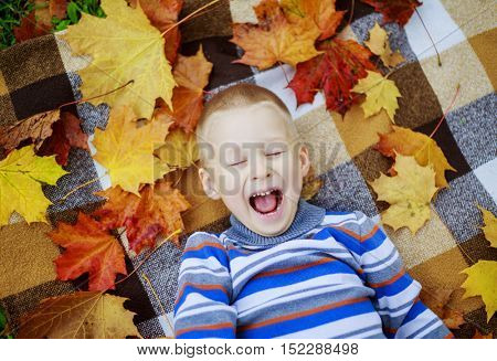 happy boy relaxing in the autumn park