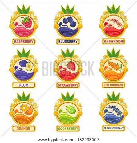 Jam Label Sticker Collection Of Templates In Round Frames. Colorful Berry And Fruit Jar Vector Labels For Homemade Marmalade.