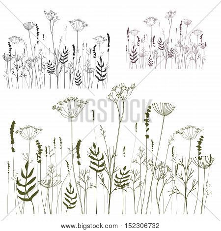 Hand drawn vector illustration of meadow. Thin delicate lines silhouettes of different herbs and plants - lavender dill fennel. Isolated on white background. EPS8.