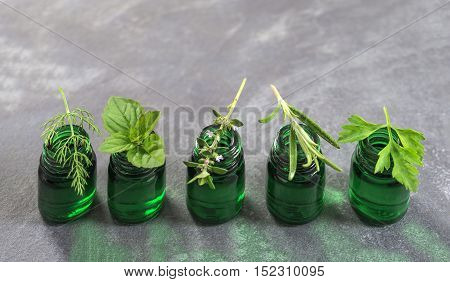 Green Bottle of essential oil with Fresh herbs and medicinal plants on slate background