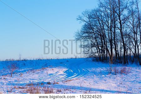 Snowy road on winter forest at sunset, serene outdoor natural background