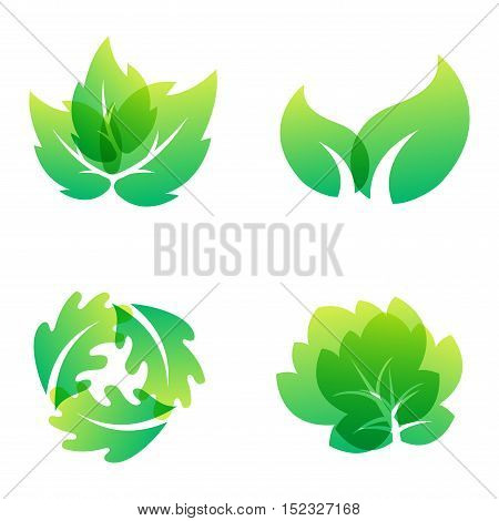 Green leaf eco design element icon. Leaf icon vector illustration friendly nature elegance symbol. Decoration flora leaf icon on white. Natural element ecology symbol green organic icon