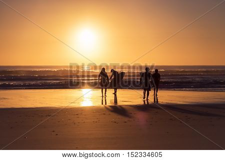 Surfers walking towards the ocean during sunrise - Gold Coast, Queensland, Australia
