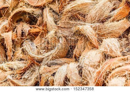 Closeup coconut spathe fiber for texture background.