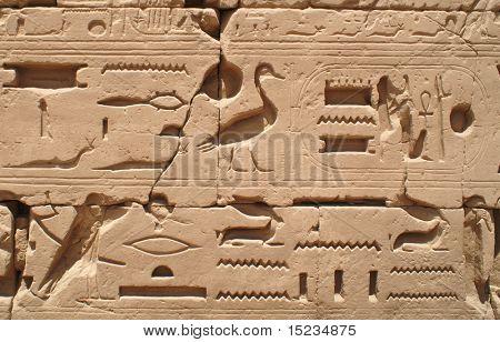 Egypt hieroglyphics in Luxor