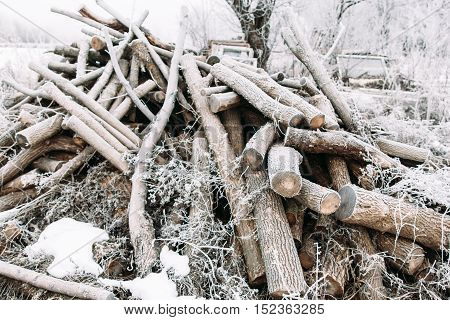 Bunch of frosty firewood in yard. A lot of dry sticks covered with snow. Winter, cold, early frosts, hoar concept
