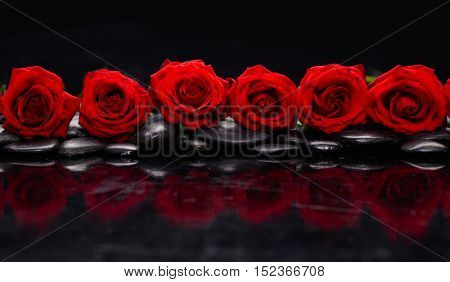 Set of red rose and wet stones