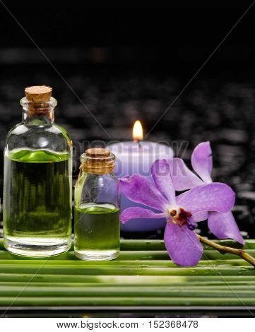 bamboo grove with orchid ,candle ,massage oil on wet background