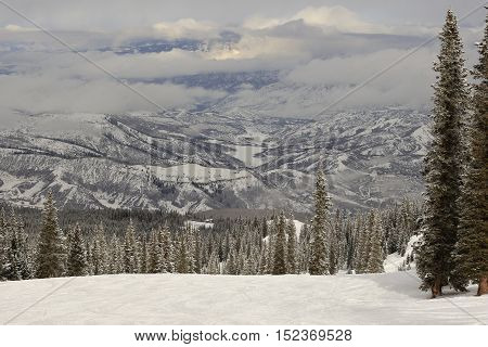 Mountains covered with snow;trees in the foreground; Colorado