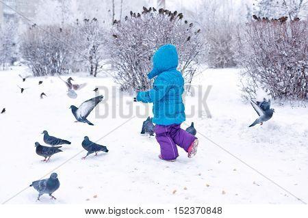 Cute little girl on a walk in a winter park. Kid frightening pigeons. Childhood Joy.