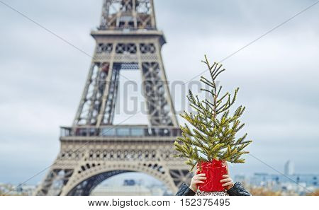 Child In Front Of Eiffel Tower Holding Christmas Tree On Head