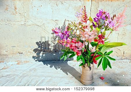 Still life with lupines near the wall