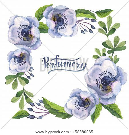 Wildflower anemone flower frame in a watercolor style isolated. Full name of the plant: anemone, nemorosa, ranunculus. Aquarelle wild flower for background, texture, wrapper pattern, frame or border.