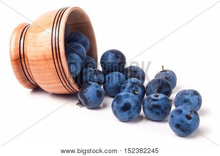 blackthorn berries in a wooden bowl isolated on white background.