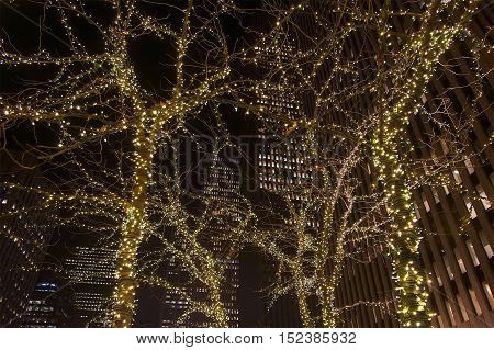 Christmas golden decoration on a trees in New York
