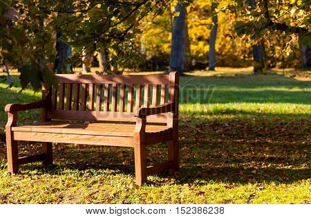bench in the park, autumn and leaves lie on the ground,