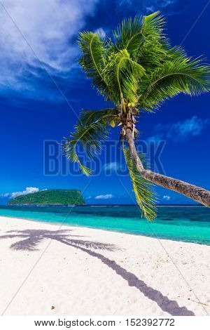 Tropical vibrant natural beach on Samoa Island with palm tree over water