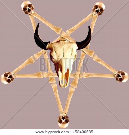 Pentagram made of crossed bones with human and animal skulls. Resource for your design