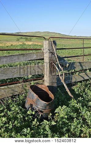 Feed barrel leans against wood fence in an abandoned weedy corral