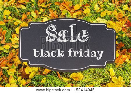 Autumn sale text on black lable with fall green grass and fallen leaves in background