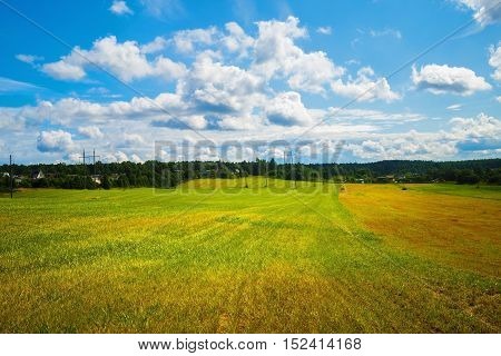 Rural summer landscape. Sunny day in the countryside. Field of green grass and blue sky with cumulus clouds.