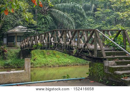 Old wooden bridge over the river with jungle background