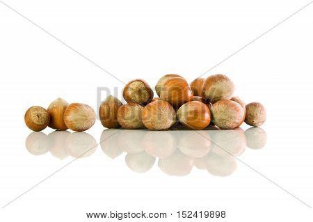Hazelnut Not Peeled