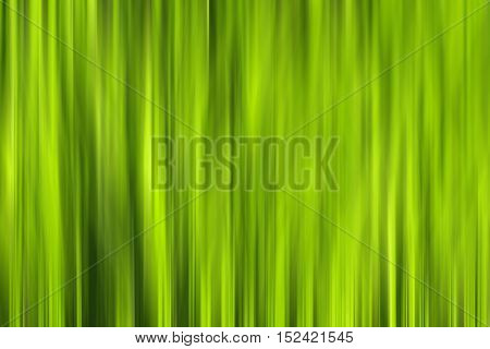 Motion blur of blades of grass in the sunshine creating a vibrant green background wallpaper image with copy space