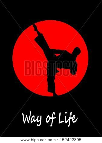 Silhouette of karate fighter doing high kick. Vector illustration