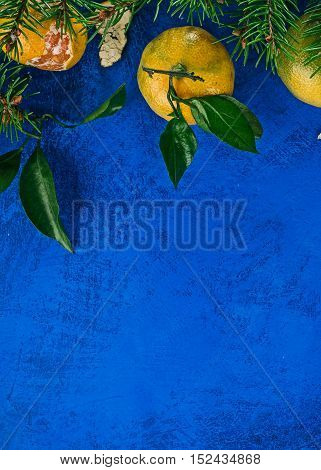 Top framework of mandarins with  evergreen twigs over painted vibrant blue surface