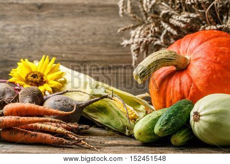 Autumn rustic vegetables