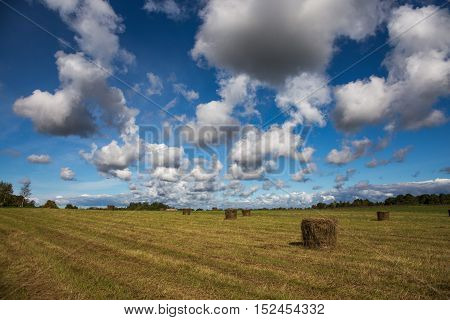 Haystacks on the field under blue sky with clouds in summer