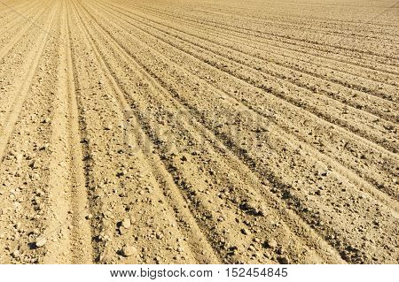 Agricultural soil with tractor tracks