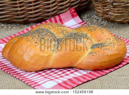 bread, wheaten long loaf with poppy