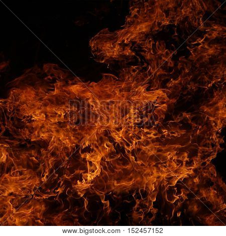 Background of fire. A continuous fire. The big fire, the red flame, the fire texture. Back with fire. Burning bright.