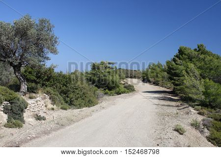 Countryside landscape from Rhodes