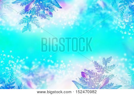 Abstract background. delicate and colorful flowers daisies