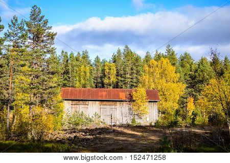 abandonend cottage in the autumn woods made of metal plates