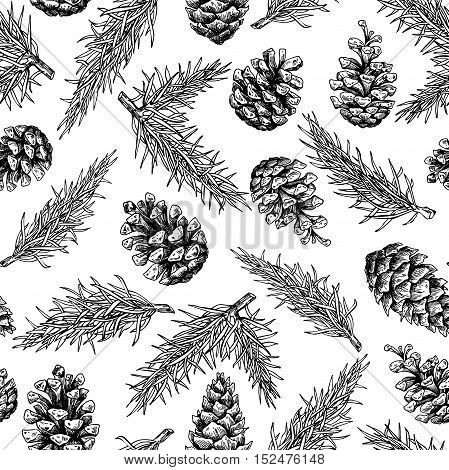 Pine cone and fir tree seamless pattern. Botanical hand drawn vector background. Isolated xmas pinecones. Engraved forest collection. Great for greeting cards, backgrounds, holiday decor