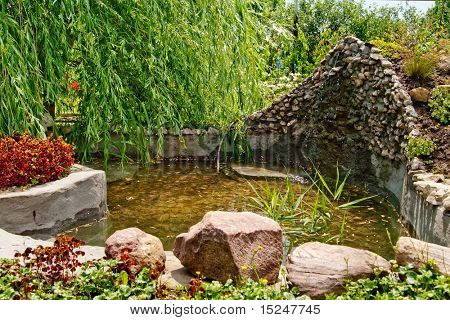 beautiful pond, green willow, water