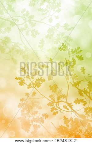 A silhouette of fall leaves and tree branches with a pastel brown to green color gradient on a soft bokeh background.