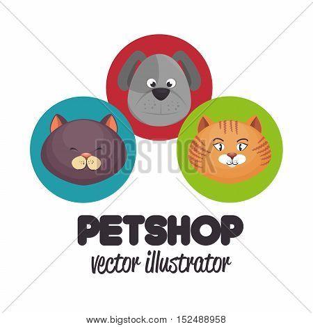 pet shop veterinary design graphic vector illustration eps 10